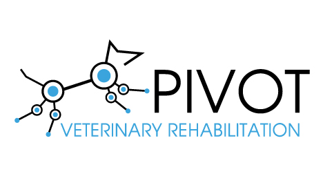Pivot-Veterinary-Rehabilitation-logo-design